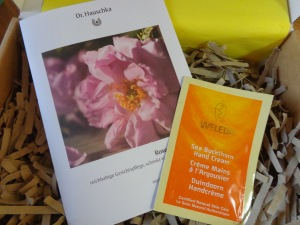 Dr Hauschka Rose Day Cream and Weleda Sea Buckthorn Replenishing Hand Cream